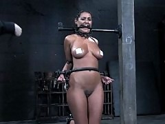 Charley Chase cums so hard it looks like she's having a seizure.